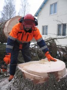 Vaikeat puun kaadot